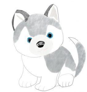 Husky Pup Dog