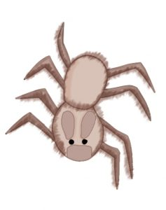 The Ugly Brown Spider