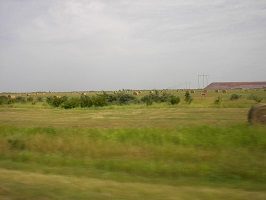Canadian Prairies in the Summer