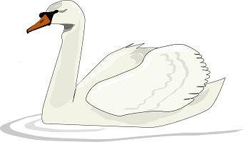 The Swan that Sings
